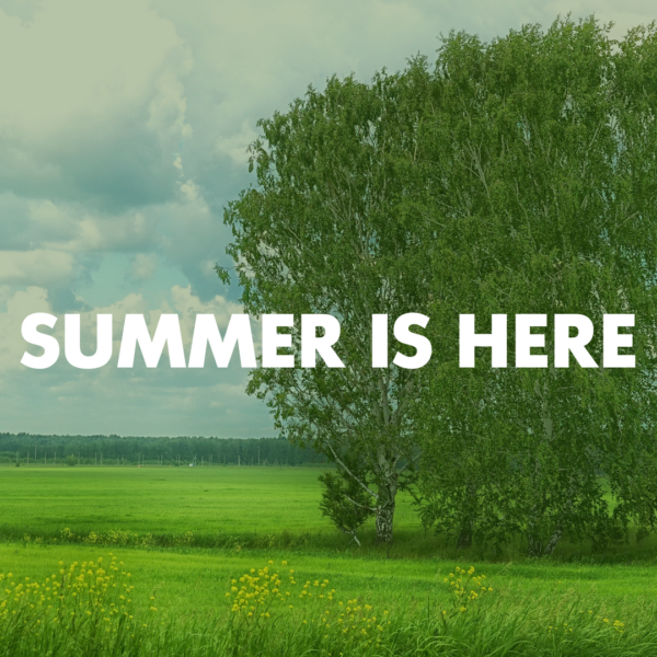 summer landscape with the text summer is here.